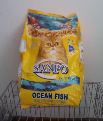 cat-food-01.jpg